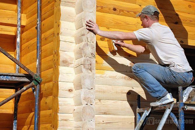 Биозащита для древесины какой лучше выбрать