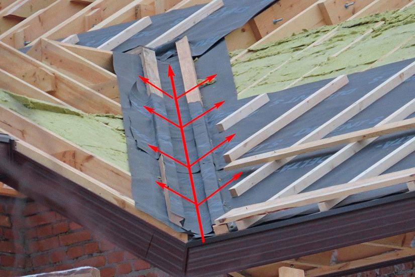 корончатый ендова на крыше фото обработка