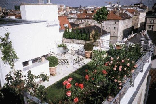 Сад на крыше проект